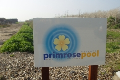 Primrose swimming pool